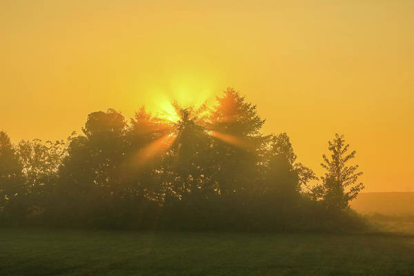 Photograph - Morning Star by Dan Sproul