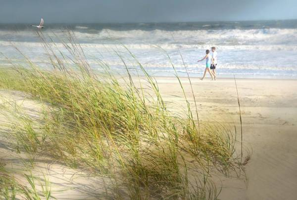 Wall Art - Photograph - Mid Morning Stroll by Diana Angstadt
