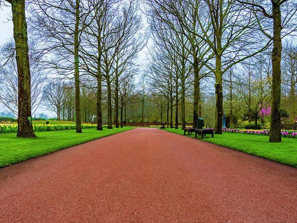Photograph - Morning Stroll by Paul Wear