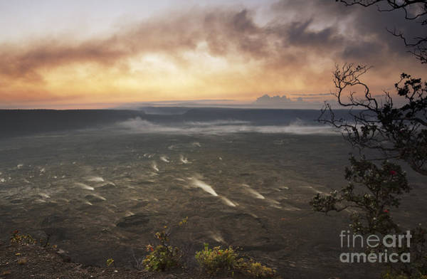 Photograph - Morning Vents by Charmian Vistaunet