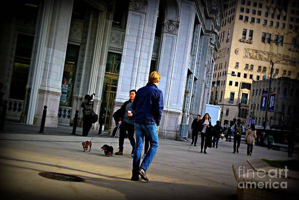 Photograph - Morning Vibe - City Of Chicago by Frank J Casella