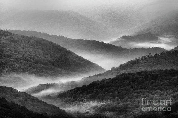 Photograph - Morning View Black And White  by Thomas R Fletcher