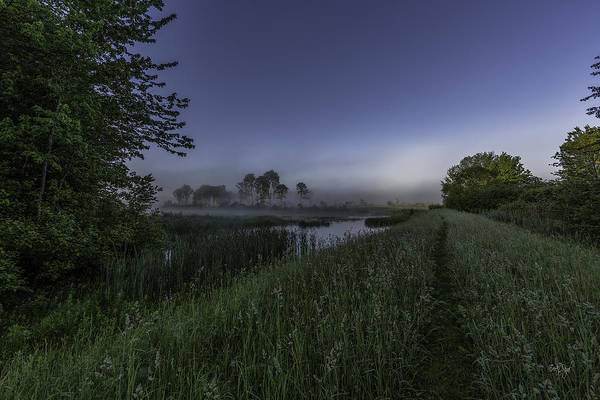 Upstate Photograph - Morning Walk by Everet Regal