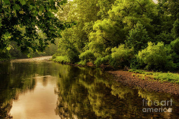 Photograph - Morning Warmth Williams River  by Thomas R Fletcher