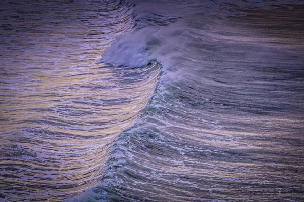 Photograph - Morning Wave by Bill Posner