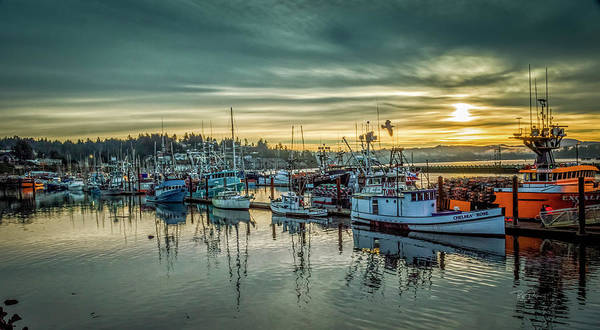 Photograph - Morning With Bright Sun by Bill Posner