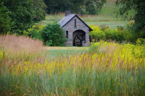 Wall Art - Photograph - Morris Arboretum Mill In September by Bill Cannon