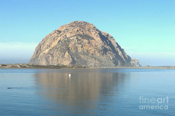 Wall Art - Photograph - Morro Rock Reflection by Meeli Sonn