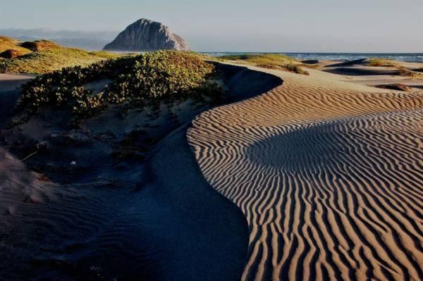 Photograph - Morro Strand State Beach, California by Flying Z Photography by Zayne Diamond