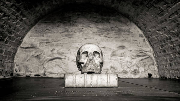 Wall Art - Photograph - Mortality by Stephen Stookey