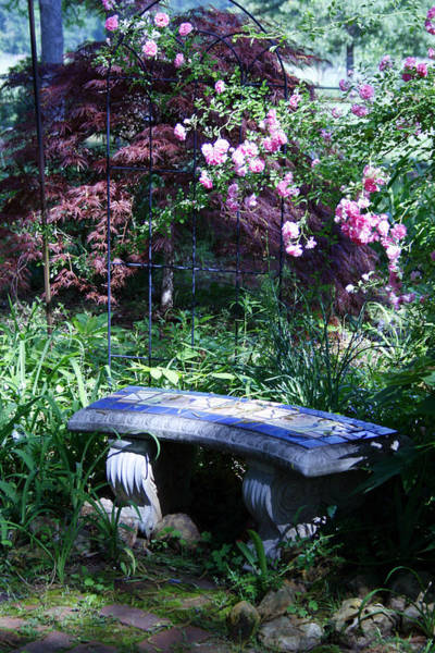 Surprise Lily Photograph - Mosaic Bench Under Roses by Shirley Sykes Bracken