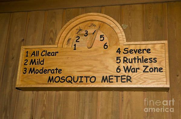 Wall Art - Photograph - Mosquito Meter Congaree National Park, South Carolina by Jason O Watson