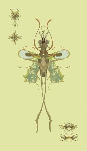 Mosquito Specimen Art Print