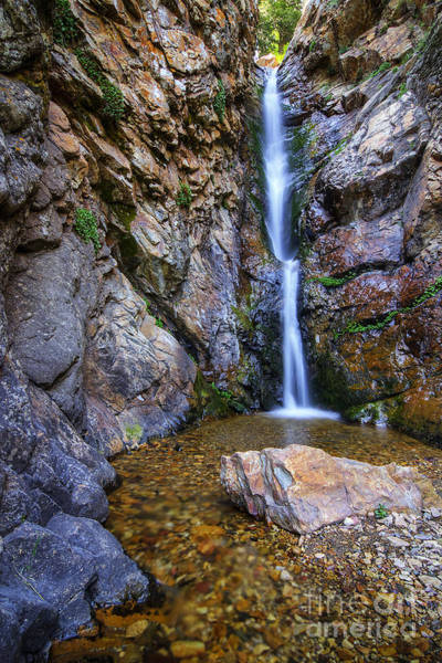 Photograph - Moss Ledge Waterfall by Spencer Baugh