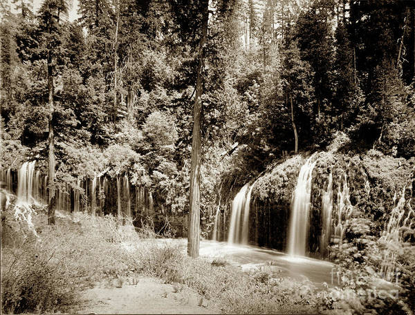 Photograph - Mossbrae Falls Shasta Springs Circa 1908 by California Views Archives Mr Pat Hathaway Archives