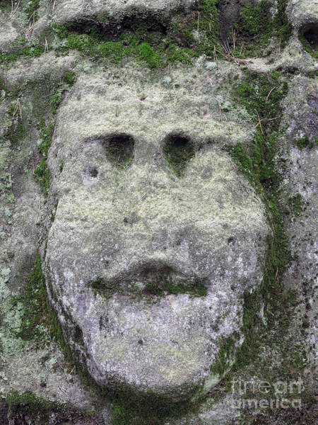 Old Wall Art - Photograph - Mossy Bizarre Stone Heads - Rock Sculptures by Michal Boubin