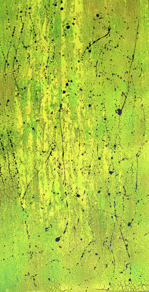 Photograph - Mossy Green Abstract by Floyd Snyder