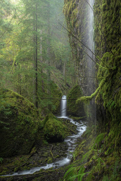 Mossy Wall Art - Photograph - Mossy Grotto Falls by Jeffrey Green