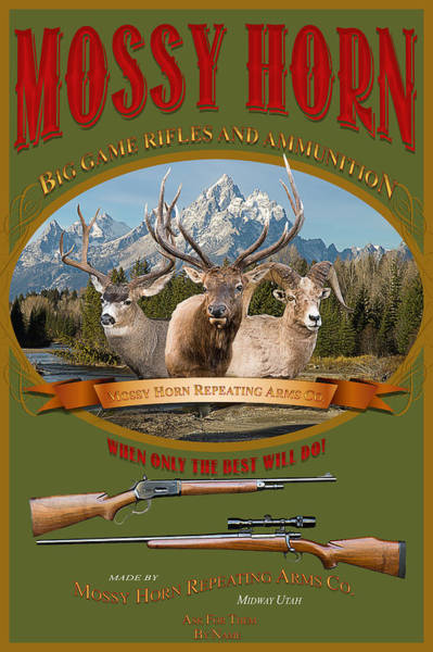 Photograph - Mossy Horn Big Game Rifles And Ammunition by TL Mair