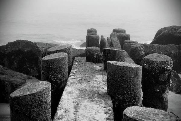 Wall Art - Photograph - Mossy Jetty In Black And White - Jersey Shore by Angie Tirado