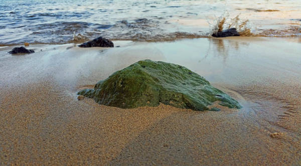 Photograph - Mossy Rock by Pamela Walton
