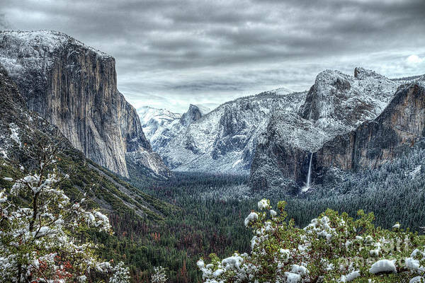 Photograph - Most Beautiful Yosemite National Park Tunnel View by Wayne Moran
