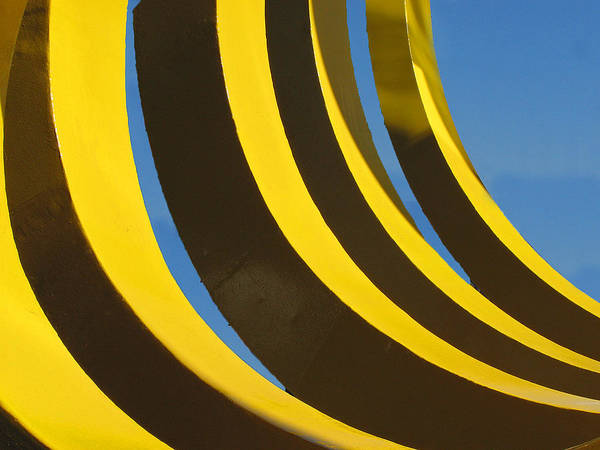 Photograph - Mostly Parabolic by Rick Locke