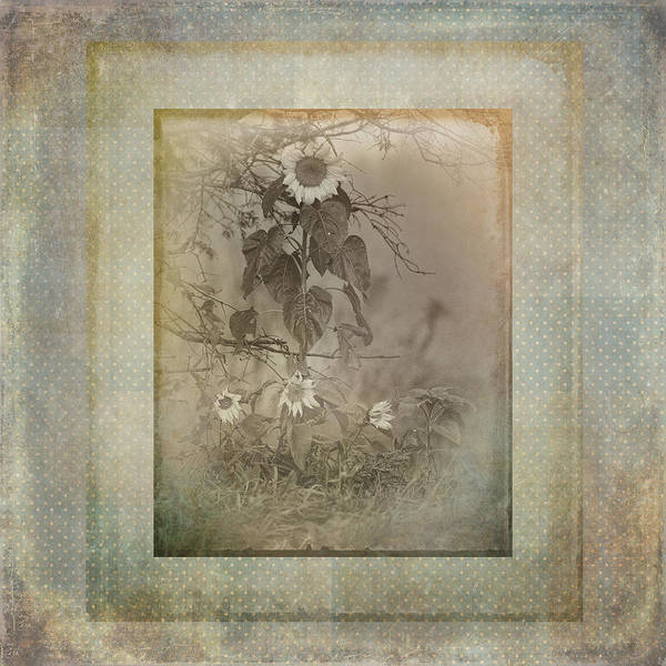 Susan Photograph - Mother And Child Reunion Vintage Frame by Susan Capuano