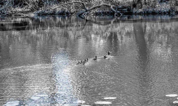 Photograph - Mother And Children.bw #e9 by Leif Sohlman
