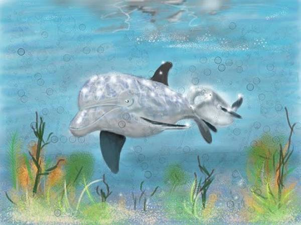 Digital Art - Mother Dolphin And Baby by Darren Cannell