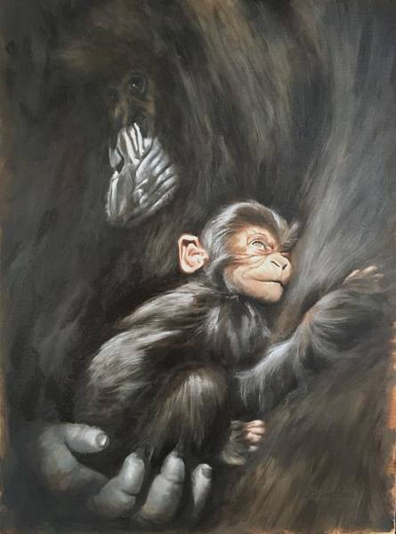 Baby Gorilla Painting - Mother's Arms by Sonsoles Shack