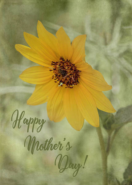 Photograph - Mother's Day Sunflower by Teresa Wilson
