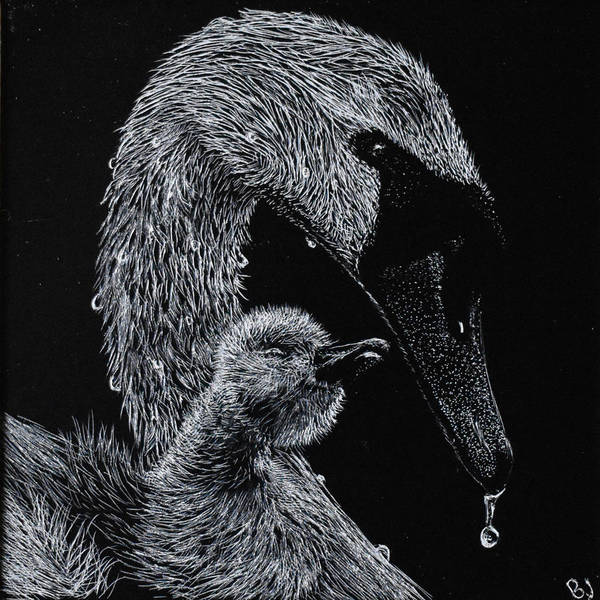 Scratchboard Drawing - Mothers Love by Brittany Johnson