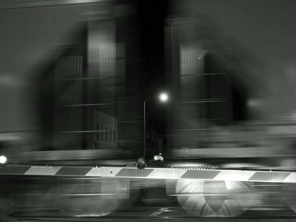 Photograph - Winona In Motion by Wild Thing
