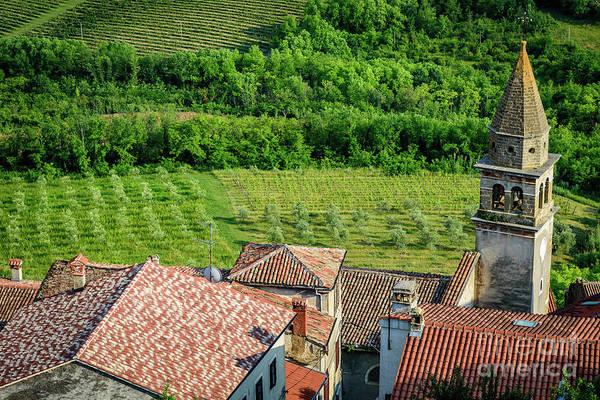 Motovun Istrian Hill Town - A View From The Ramparts, Istria, Croatia Art Print