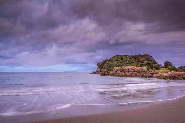 Pohutukawa Photograph - Moturiki Island by Robert Green