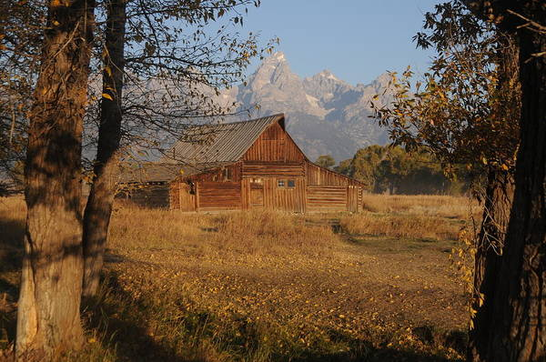 Moulton Barn With The Tetons Art Print