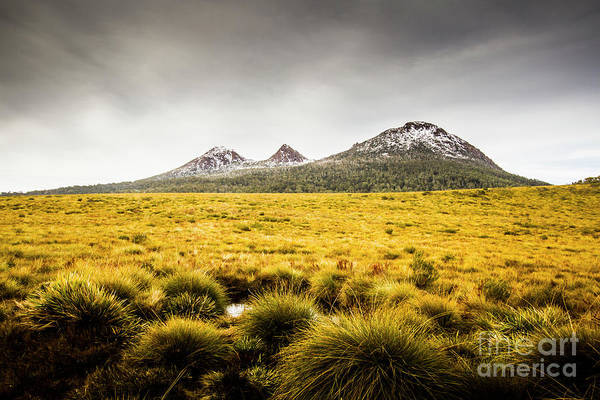Grassland Photograph - Mount Arrowsmith Tasmania Australia by Jorgo Photography - Wall Art Gallery