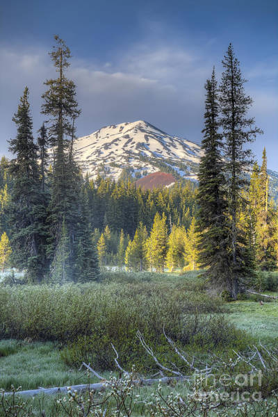 Wall Art - Photograph - Mount Bachelor From Todd Lake by Twenty Two North Photography