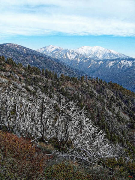 Photograph - Mount Baldy Vista by Glenn McCarthy Art and Photography