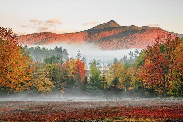 Photograph - Mount Chocorua by Robert Clifford
