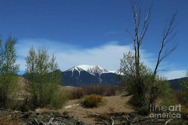 Wall Art - Photograph - Mount Herard View by Christiane Schulze Art And Photography