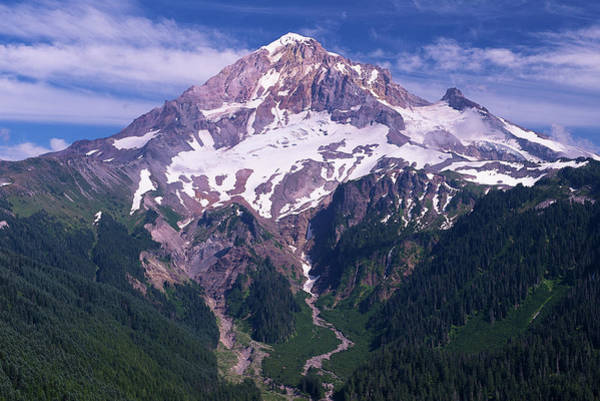 Wall Art - Photograph - Mount Hood by Patrick Campbell