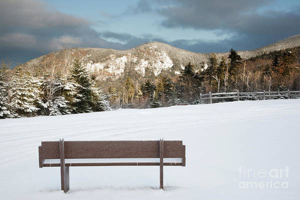 Photograph - Mount Huntington - White Mountains New Hampshire  by Erin Paul Donovan