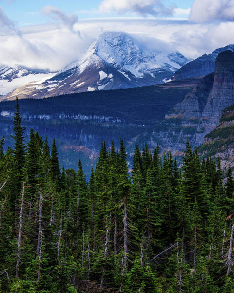 Photograph - Mount Jackson 3 by Jedediah Hohf