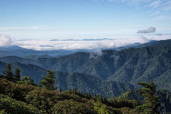 Photograph - Mount Leconte Morning by Jemmy Archer