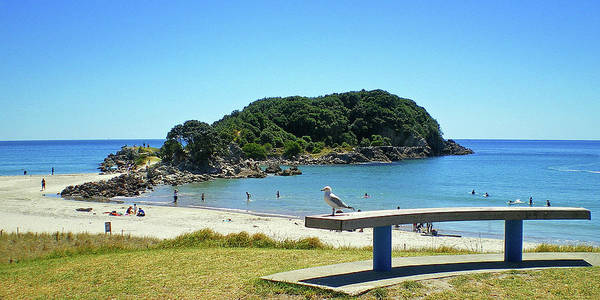 Photograph - Mount Maunganui Beach 4 - Tauranga New Zealand by Selena Boron