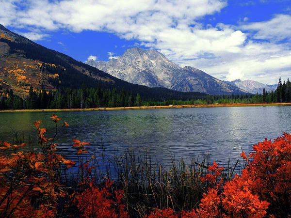Photograph - Mount Moran In The Fall by Raymond Salani III