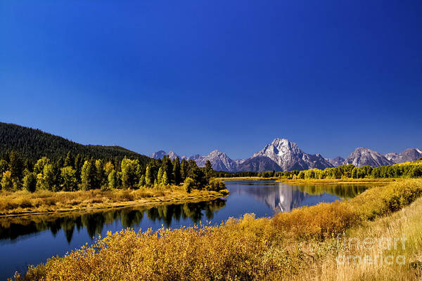 Photograph - Mount Moran by Mark Jackson