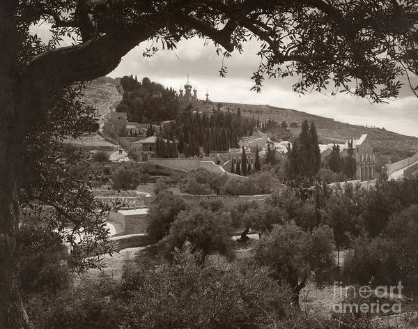 Photograph - Mount Of Olives by Granger